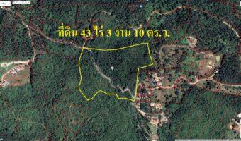PH817 ขายที่ดิน เกาะสมุย ตำบลตลิ่งงาม 43 ไร่ 3 งาน 10 ตร.ว. เป็นพื้นที่สีชมพู ติดถนนเห็นวิวทะเลแบบ Panoramic