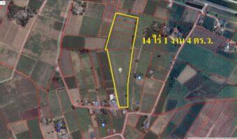 PH521 ขายที่ดินดอนชะเอม จ.กาญจนบุรี 14 ไร่ ใกล้ตลาดโลตัส มีถนนตัดผ่าน เหมาะสำหรับทำหมู่บ้าน