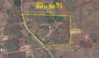 PH583 ขายที่ดิน 50 ไร่ ติดทางหลวง 320 เมตร ขายถูกมาก พร้อมค่าโอนและภาษี เพียง 238,000บาท/ไร่