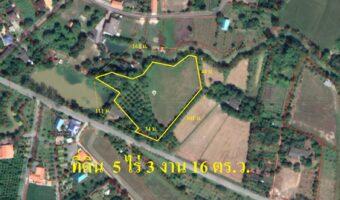 PH590 ขายที่ดินมีสวนมะยงชิดและที่นา