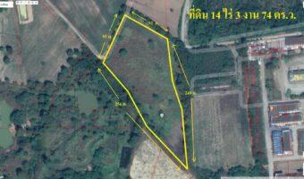 PH855 ขายที่ดิน 14 ไร่ 3 งาน 74 ตารางวา เป็นพื้นที่สีชมภู พิกัด ต.โชคชัย