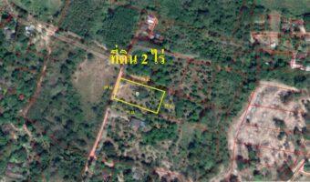 PH671 ขายที่ดินเป็นสวนผลไม้ ติดถนนลาดยาง 2 ไร่ ด้านหน้าด้านข้างวิวภูเขา