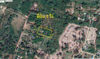 PH672 ขายสวนทุเรียนหมอนทอง และสวน ส้มโอ เนื้อที่ 2 ไร่ ถ้วน พร้อมโฉนดพร้อมโอน