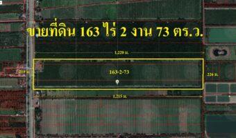 PH686 ขายที่ดินเลียบคลอง 11 ปทุมธานี 163 ไร่ 65 ล้านบาท