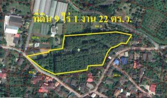 PH728 ขายสวนไม้สัก+ลำใย 9 ไร่ 1 งาน 22 ตร.ว. อ.สันป่าตอง จ.เชียงใหม่