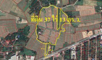 PH735 ขายที่ดินนาข้าว&เกษตรผสมผสาน ติดถนนสีเลนสายสันป่าตอง-บ้านกาด/แม่วาง