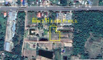 PH948 ขายที่ดิน 2 ไร่ 1 งาน 37 ตารางวา พื้นที่สีเขียว ติดถนนดิน 53 เมตร