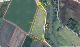 PH987 ขายที่ดิน 9 ไร่ อำเภอบ้านนา พื้นที่สีเขียว