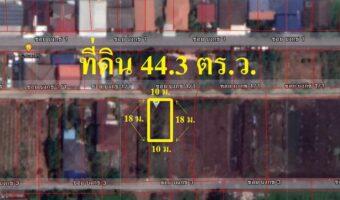 PH960 ขายที่ดิน 44.3 ตารางวา ซอย บงกช 1/1 ใกล้ถนนคลองหลวง-บางขันธ์