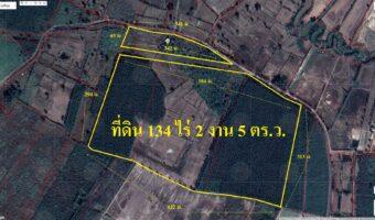 PH968 ขายด่วนที่ดินแปลงใหญ่ 134 ไร่ 2 งาน 5 ตารางวา ใกล้วัดบ่อสามถ้ำ