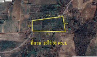 PH966 ขายที่ดิน อำเภอหนองบัวระเหว 20 ไร่ 31 ตารางวา (ที่โฉนด) ติดถนนสาธารณะ 2 ด้าน พื้นที่สีเขียว