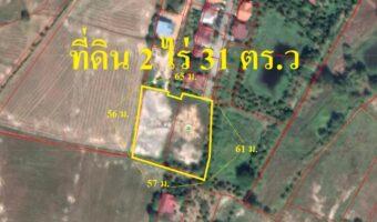PH502 ขายที่ดิน 2 แปลงติดกัน เนื้อที่ 1 ไร่ 37 ตร.ว กับ 394 ตร.ว.
