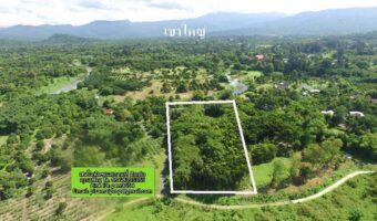 PH492 ขายที่ดิน 8 ไร่ ขายไร่ละ 3 ล้านบาท ราคานี้รวมค่าดำเนินการ