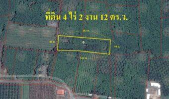 P79 ขายสวนยางพารา นาไม้ไผ่ 4 ไร่ 2 งาน 12 ตารางวา น้ำไฟพร้อม ถนนคอนกรีต ใกล้โรงเรียน