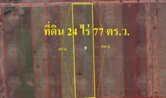 P110 ขายที่ดิน 24 ไร่ 77 ตร.ว. อำเภอตากฟ้า นครสวรรค์ ใกล้ตลาดนัด