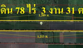 P132 ขายที่ดิน 78 ไร่ 3 งาน 31 ตารางวาหนองเสือ ปทุมธานี ผังสีชมพู