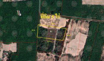 P140 ขายที่ดิน จำนวน 5 ไร่ อ.เมืองอุดร ต.บ้านจั่น ใกล้ ชุมชนดินหนองแดนเหนือ ติดถนนสาธารณะ