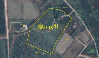 P157 ขายสวนพร้อมบ้าน นครชัยศรี ติดมอเตอร์เวย์