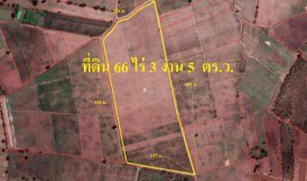 P94 ขายที่ดิน 66 ไร่ 3 งาน 5 ตร.ว. ห้วยกระเจา กาญจนบุรี ทำเลสวยมาก เหมาะทำฟาร์ม หรือ โซล่าเซลส์