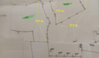 P221 ขายที่ดิน 115 ไร่ 2 งาน 60 ตร.ว.พร้อมบ้าน พร้อมสวนไม้ป่าสักทอง วังสะพุง จังหวัดเลย ผังสีเขียว