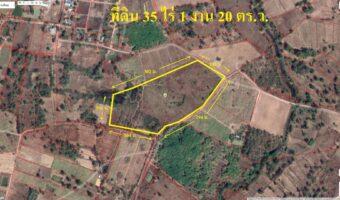 P309 ขายที่ดิน 35 ไร่ 1 งาน 20 ตร.ว. พื้นที่สีเขียว ขายต่ำกว่าราคาประเมิน ที่ดินเป็นโฉนด พร้อมโอน